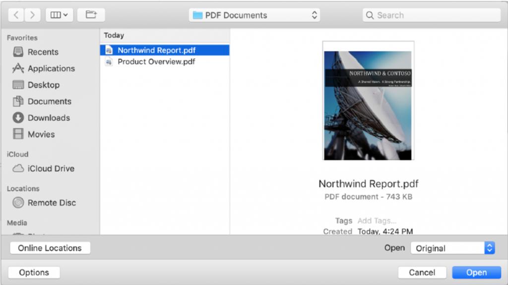 Open PDF in Word