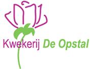Kwekerij De Opstal - rozen - Naaldwijk